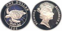 1 Dollar Silber 1986 Bermudas 25 Jahre WWF, Suppenschildkröte PP - Proo... 23,00 EUR  +  6,00 EUR shipping