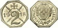 1918   Hamm - Eisen 1918 (Funck 191.7) 2 Pfennig  vz-st  75,00 EUR  +  7,00 EUR shipping