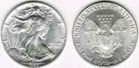 USA 1 Dollar 1988 Stempelglanz USA, american eagle, 1 ounce fine silver,... 21,00 EUR  +  9,00 EUR shipping