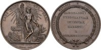 Medaille 1823 Niederlande Haarlem  Winzige Kratzer, vz  85,00 EUR  +  3,00 EUR shipping