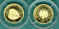 20 Euro 2015 G Bundesrepublik Deutscher Wald ' Linde ' / mit Zertifikat... 199,00 EUR  +  6,90 EUR shipping