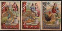 1891 Liebigbilder-Sinnbilder Liebig 194 gut erhalten  30,00 EUR  +  6,50 EUR shipping