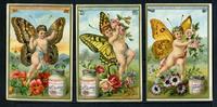 1891 Liebigbilder-Schmetterlinge III Liebig 192 gut erhalten  80,00 EUR  +  6,50 EUR shipping