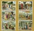 1907 Liebigbilder-Die Seide Liebig 717# guter zustand  2,70 EUR  +  6,50 EUR shipping