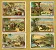 1908 Liebigbilder-Bilder aus Venezuela Liebig 724# guter zustand  19,95 EUR  +  6,50 EUR shipping