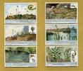 1932 Liebigbilder-Insektenfressende Pflanzen Liebig 1025# guter zustand  6,25 EUR  +  6,50 EUR shipping