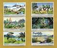 1933 Liebigbilder-Klima und Pflanzenwelt Liebig 1040# guter zustand  6,95 EUR  +  6,50 EUR shipping