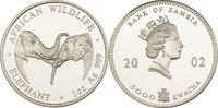 5000 Kwacha 2002 Sambia Elefant PP