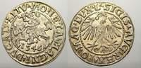Halbgroschen 1546 Polen-Litauen Sigismund ...