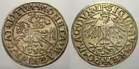 Halbgroschen 1550 Polen-Litauen Sigismund ...