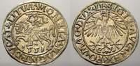 Halbgroschen 1551 Polen-Litauen Sigismund ...