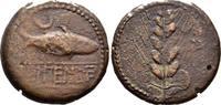 Bronze 1. Jhdt. v. Keltiberer