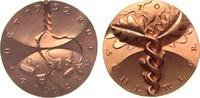 Medaille 1998 Speyer Bronze Schettler (Lud...