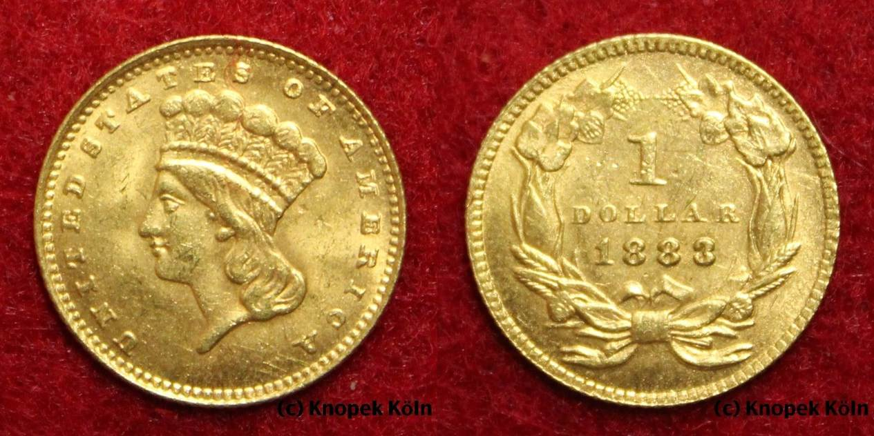 1 Dollar Gold 1883 Usa Indian Princess Large Head Großer Kopf Indianerbüste One Coin Vz