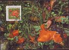 1997 Liechtenstein Maximumkarte - Natur - Pilze - Orangebecherling FDC... 2,95 EUR  +  3,95 EUR shipping