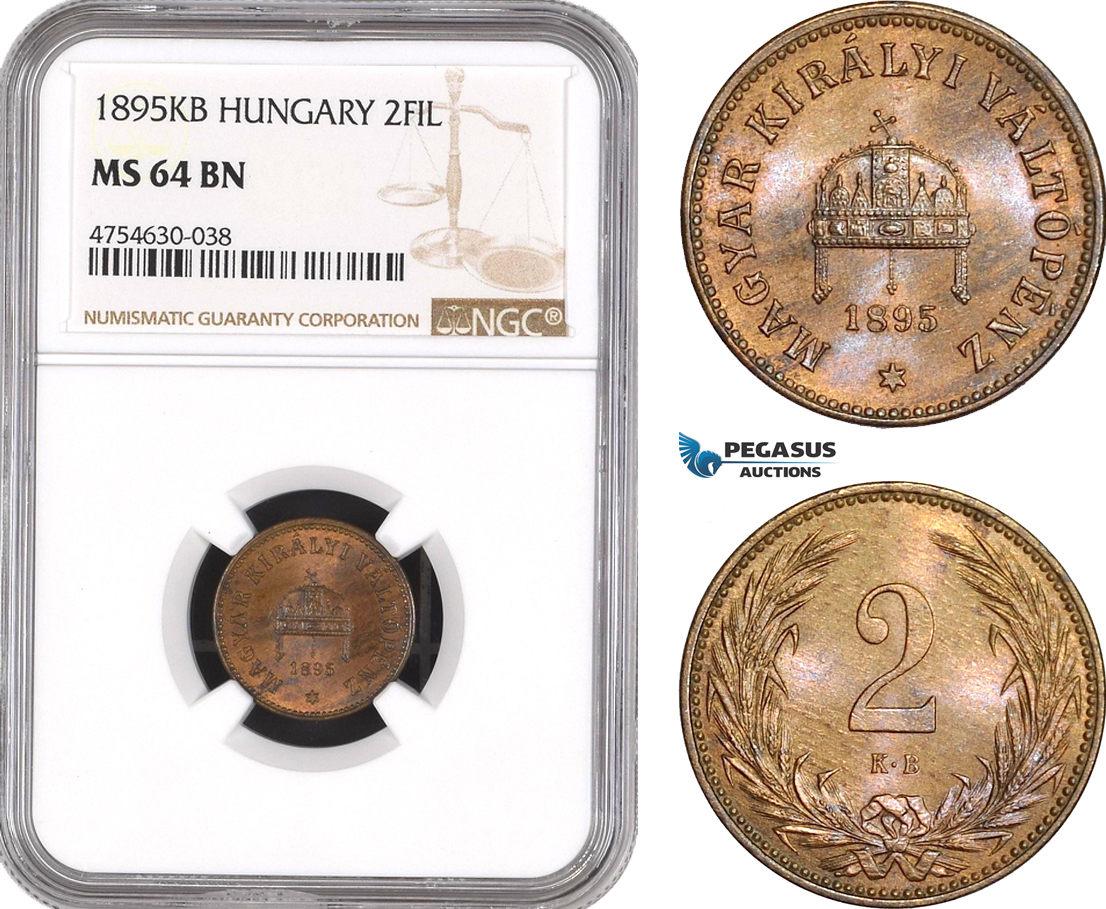 1895 Hungary 2 Filler