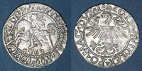 1563 EUROPA Lituanie. Grand Duché. Sigism...
